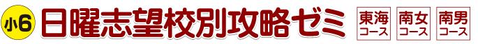 tit_nichiyo
